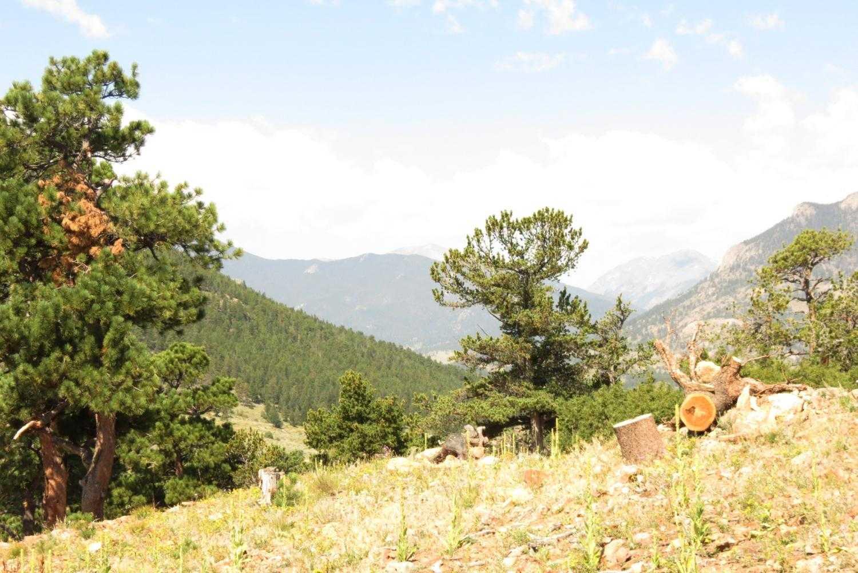 Mountain View Condo at Keno's Llama Ranch